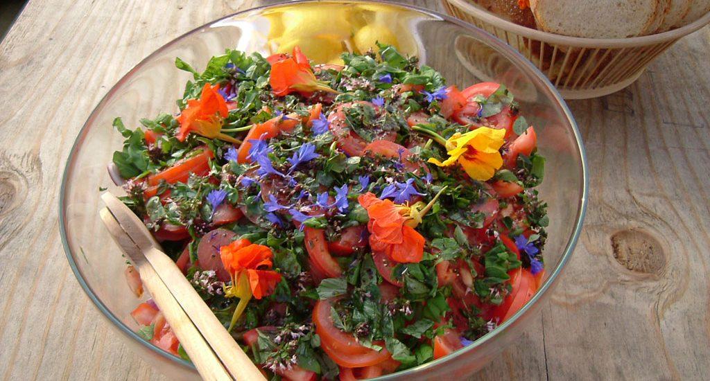 Spis din hage,spiselige blomster
